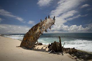 Booby-Birds-on-Remains-of-Ship-Wreck-Lasan-NWA-12